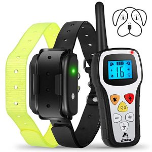 Patpet Shock Pro Dog Training Collar