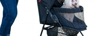 Pet Gear NO-Zip Happy Trails Lite Pet Stroller for Cats Dogs, Easy Fold with Removable Liner, Storage Basket